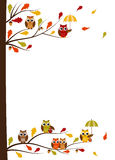 Fall owl card Royalty Free Stock Images
