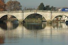 Fall på Themsenflodstranden på Richmond - på thames Arkivbilder