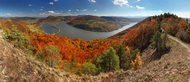 Fall Panorama with forest Royalty Free Stock Photos