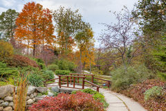 Fall in the park. Beautiful fall scenery in the one of the city parks in Indianapolis, Indiana Stock Photography