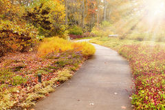 Fall in the Park. Beautiful autumn scenery in one of the Indianapolis area parks Royalty Free Stock Photo
