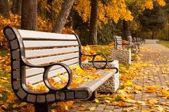 Fall in the park Royalty Free Stock Photography