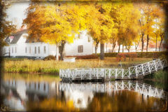 Fall in the park. Stock Photo