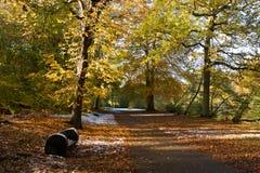 Fall park landscape Royalty Free Stock Photo
