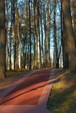 Fall park red path, Moscow, Russia Royalty Free Stock Images