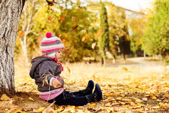 In fall park Royalty Free Stock Image