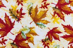 Fall pastel colors leaves background. Wallpaper color autumn cloth print stock photography