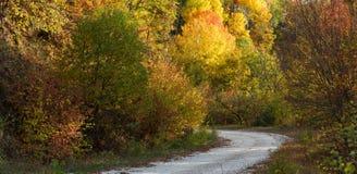 Fall path Royalty Free Stock Photos