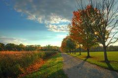 Fall Path Stock Image