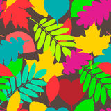 Fall pattern, seamless background of autumnal leaves Royalty Free Stock Photo