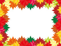 Fall pattern for your Banners, Wallpapers, Mailing, Design,Sale, Cards Autumn background rectangular with a place for information Stock Photography