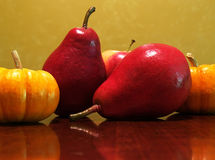 Fall pears and pumpkins Stock Images