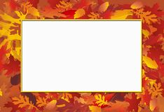 Fall Photo Frame Stock Images