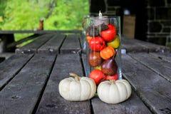 Fall-Picknick-Dekorationen Stockfotografie
