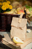 Fall picnic Stock Photos