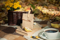 Fall picnic Stock Images
