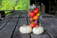 Fall Picnic Decorations Stock Photography