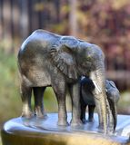 Elephant Fountain at the Lincoln Park Zoo. This is a Fall picture of the iconic Elephant Drinking Fountain located in the Lincoln spark Zoo in Chicago, Illinois Royalty Free Stock Photos