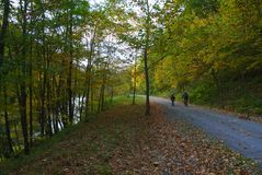 FALL ~ PINE CREEK RAIL TRAIL Stock Image