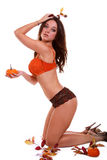 Fall Pinup Babe Royalty Free Stock Images