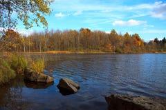 Fall pond Stock Photo