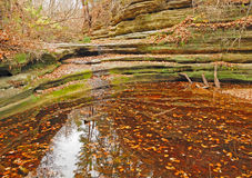 Fall pond scene in Illinois. This picture is taken in Matthiessen State Park in Illinois in the late fall Royalty Free Stock Images