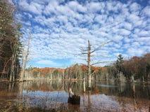 Fall pond scene Stock Photos