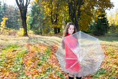 Fall. Portrait of beautiful young woman in autumn park. With umbrella stock images