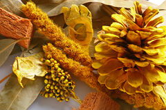 Fall Potpourri Display Royalty Free Stock Photo
