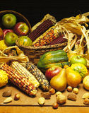 Fall Produce. Fall Vegetables & Fruits in Baskets and Cornucopia Royalty Free Stock Photo