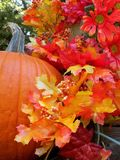 Fall pumkin. Setup with colorful leaves bright orange pumkin royalty free stock photography