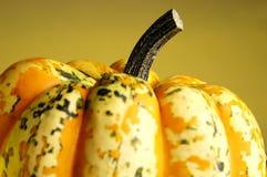Fall Pumpkin Royalty Free Stock Images