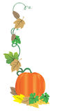 Fall pumpkin. And autumn leaves Stock Image