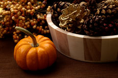 Fall - Pumpkin Arrangement Royalty Free Stock Images