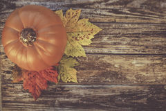 Fall Pumpkin Background Stock Images
