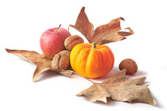 Fall pumpkin decoration Stock Photography