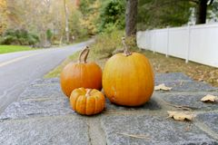 Fall, Pumpkin. Pumpkin, New England, Autumn or Fall display Royalty Free Stock Photo