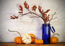 Fall Pumpkins Blue Vase royalty free stock photo