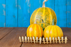 Fall pumpkins centerpiece behind toy wooden fence Royalty Free Stock Photos