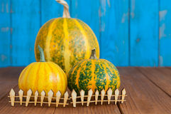 Fall pumpkins centerpiece behind toy wooden fence Royalty Free Stock Images