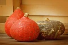 Fall Pumpkins Stock Images