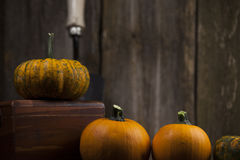Fall pumpkins with garden tool. Fall pumpkins with garden tool and rustic background Royalty Free Stock Photos