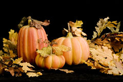 Fall Pumpkins & Leaves-horozontal. Still life of decorative fall pumpkins and leaves on black background Royalty Free Stock Photography