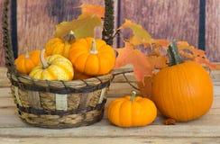 Fall Pumpkins Royalty Free Stock Photos