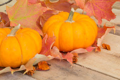 Fall Pumpkins and Leaves Stock Photography
