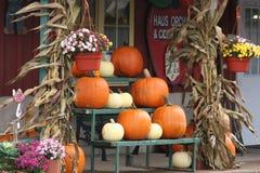Fall pumpkins royalty free stock photo