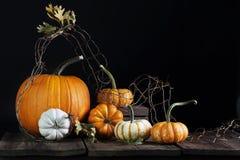 Fall Pumpkins Oak Leaves royalty free stock photography