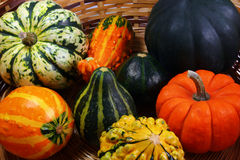 Fall pumpkins and squash #1. Fall pumpkins and squash in a basket Stock Photos