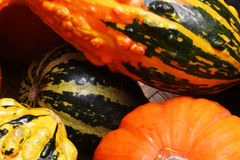 Fall pumpkins and squash #3. Fall pumpkins and squash in a basket Stock Photos