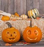 Fall Pumpkins Stock Photos